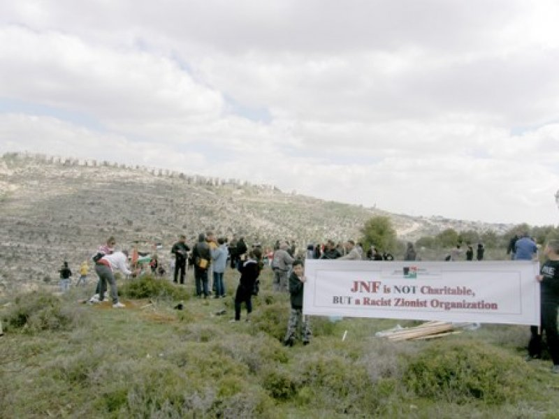 Land Day activity in Cremezan, Beit jala, March 2012. (© BADIL)