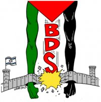 Eight years in context: BDS Indicators